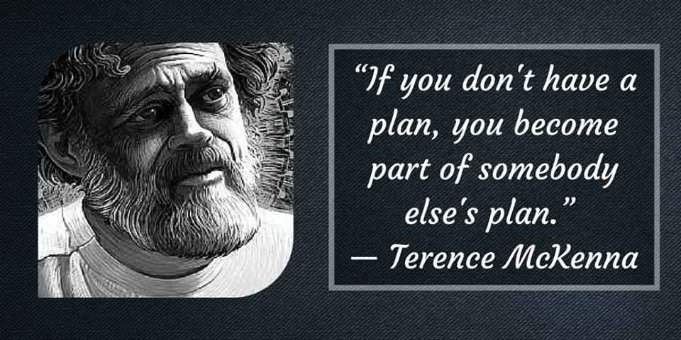 Terence McKenna - You Must Have A Plan